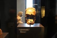 thumbs img 0797 Wyjazd humanistów do muzeów berlińskich